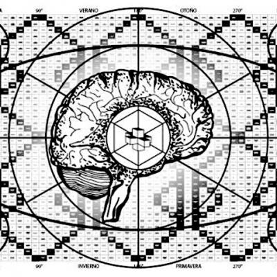 brain-new-480x480